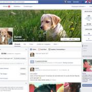 Hunde sind ein Top Thema auf Facebook Aktuell ca. 23000 Fans